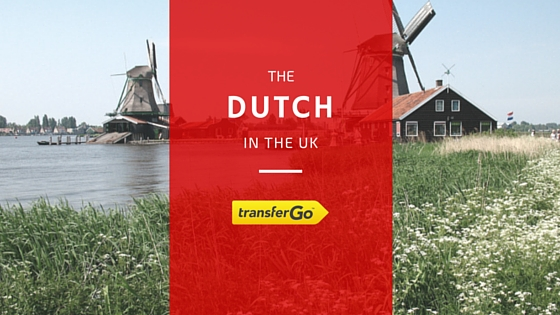 DUTCH in uk